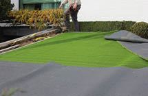 Rollout artificial grass